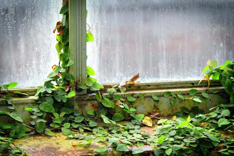 © Kristin D. Fundalinski -  Aged window